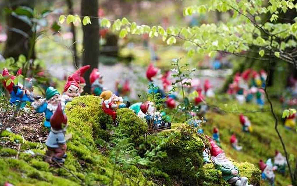 Gnome Reserve for unusual places to visit in the UK