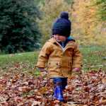 November Things to do with kids