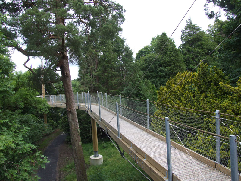 lough key experience treetop canopy walk