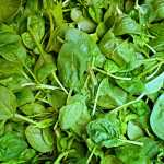 Mykidstime spinach recall listeria