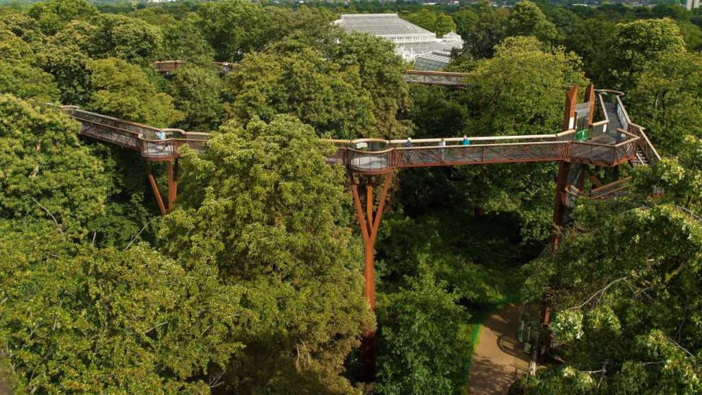 tree top walkway at kew gardens