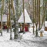 Castlecomer Discovery Park Elf & Fairy Village at Christmas Elf Places in Ireland
