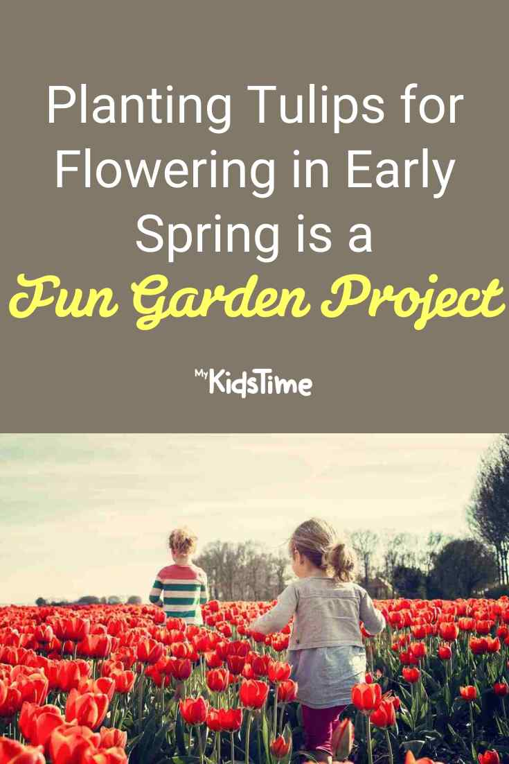 Planting Tulips With The Kids For Early Spring