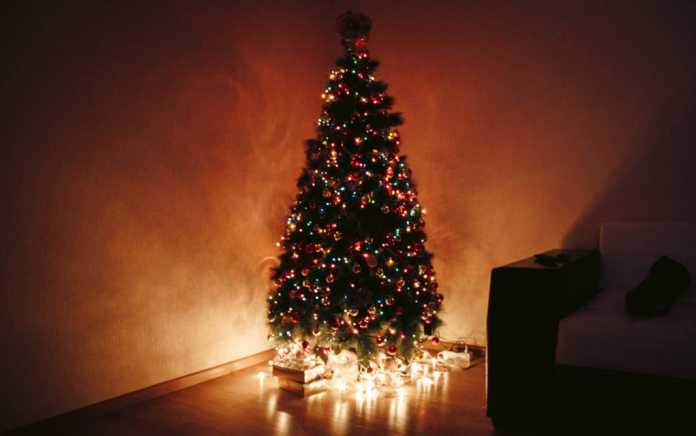 show us your christmas tree competition