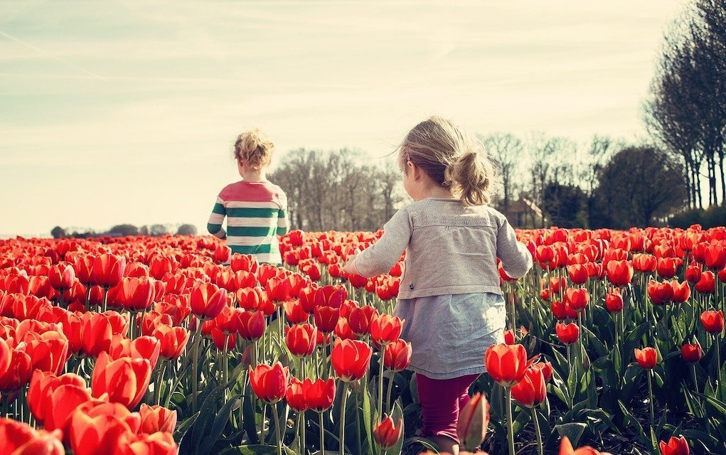 Girls walking in tulips things to do in Ireland