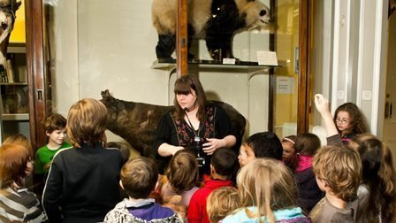 Fearsome Fangs things to do and what's on for families in Ireland
