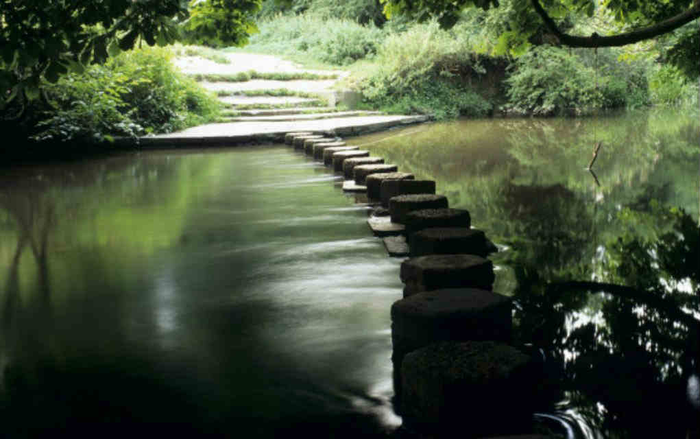 Stepping Stones walk at Box Hill for fun family walks in the UK - Mykidstime