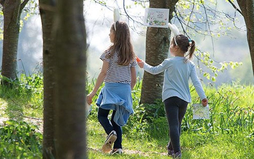Easter Egg Hunt at Birr Castle and Gardens things to do in Ireland this Easter