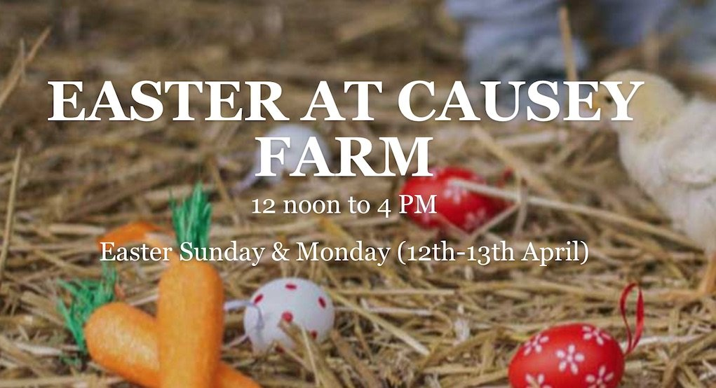 Easter at Causey Farm things to do in Ireland at Easter What's On
