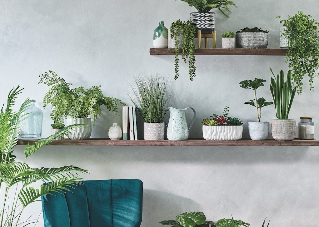 M&S Jan 2020 shelves with plants how to give your home a new look for less