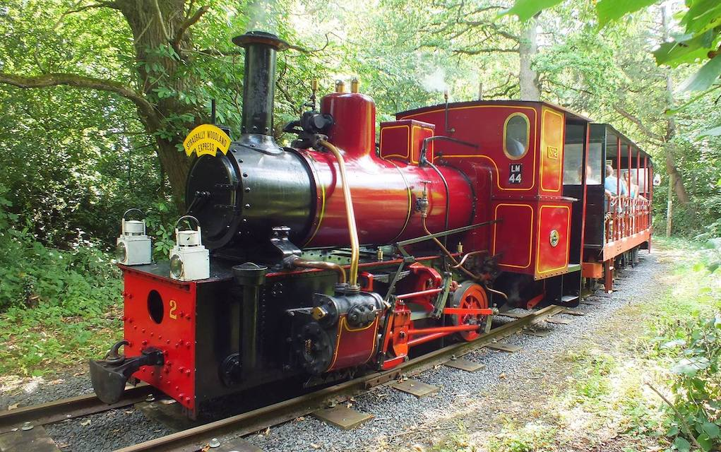 Stradbally Woodland Railway things to do in Ireland this Easter