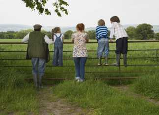 Family walks in Ireland lead image