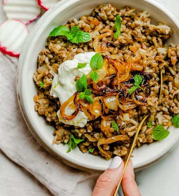 Mujadara lentil recipes