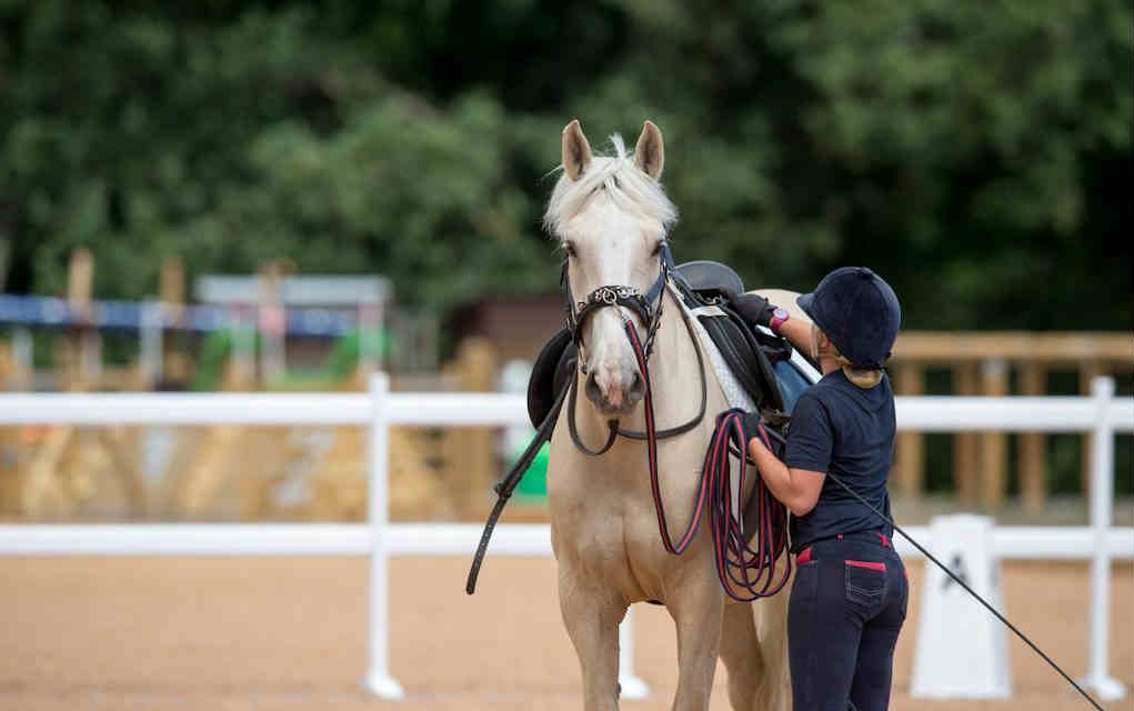 Wellington riding school residential summer camps - Mykidstime