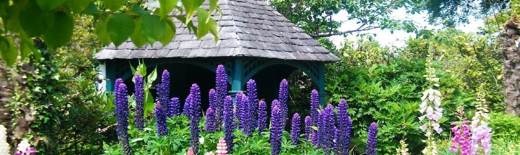 victorian-garden at Strokestown Park places for nature education for kids in Ireland