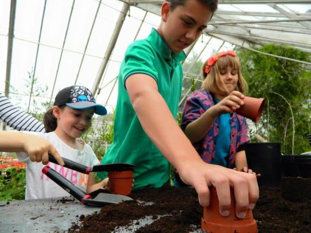 Potting plants digging for history at fota house cork things to do with kids in Cork