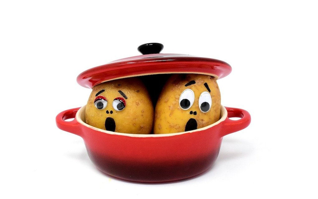 potatoes in a pot fun science facts for kids