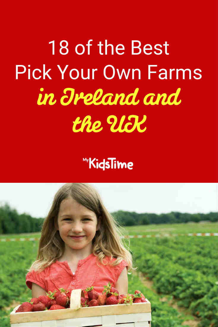 18 of the Best Pick Your Own Farms in Ireland and the UK - Mykidstime