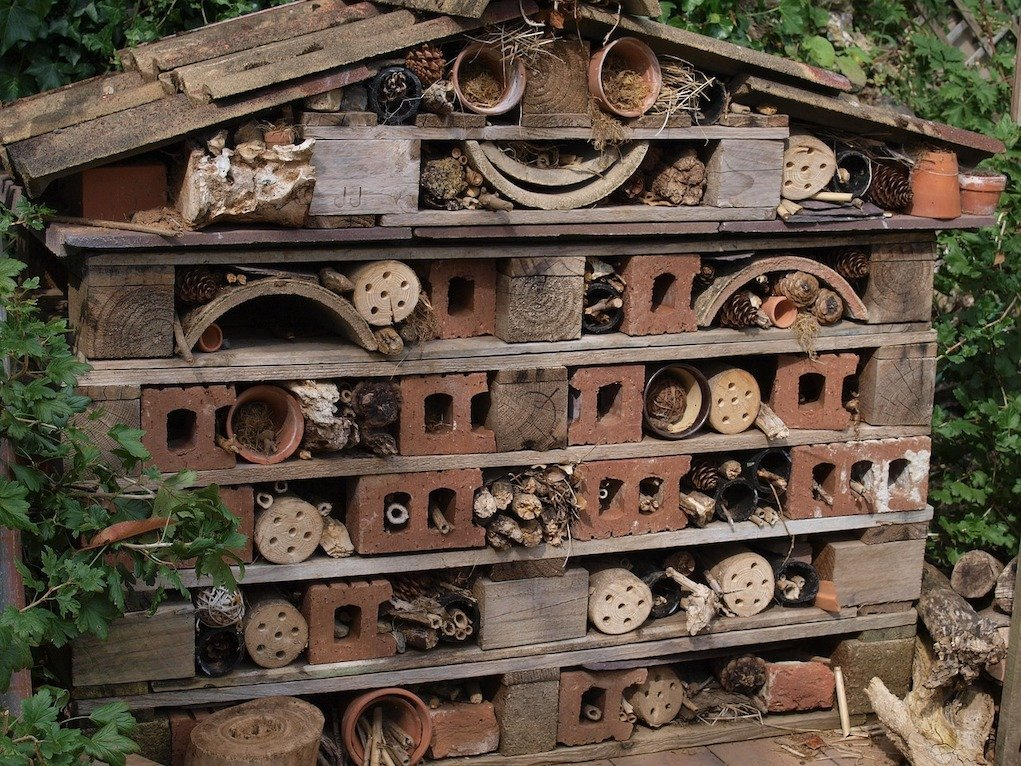 Bug Hotel eco activities for kids