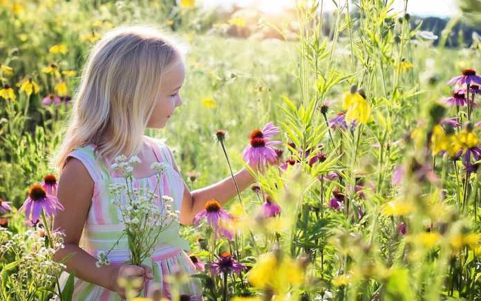 Eco friendly ways to amuse the kids at home this summer