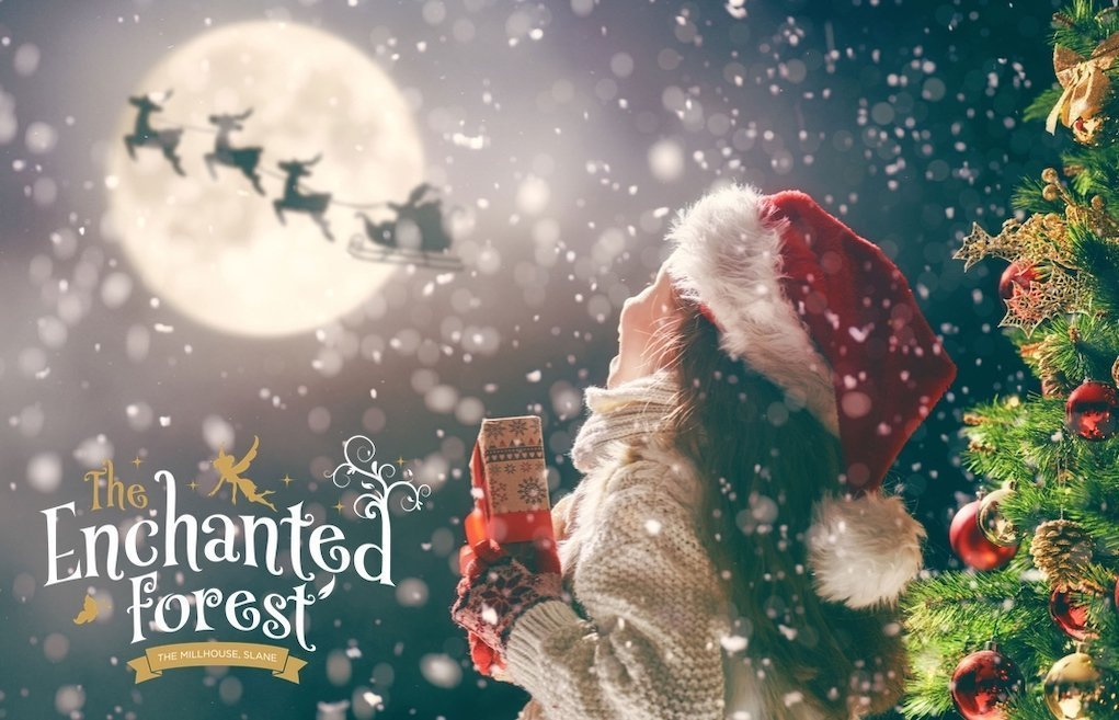 The Enchanted Forest Christmas Experience