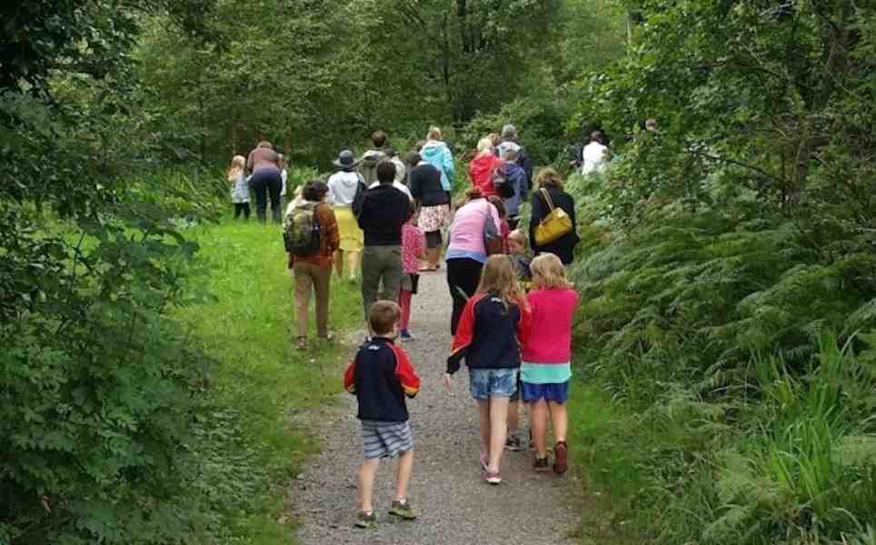 Tree trail and moss hunt for Heritage Week