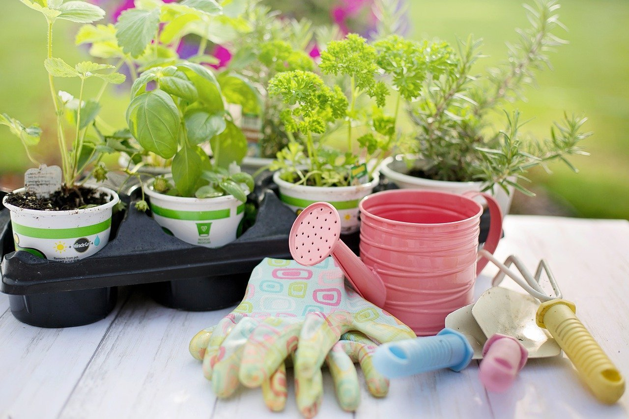 herb garden eco friendly activities for kids to enjoy at home this summer