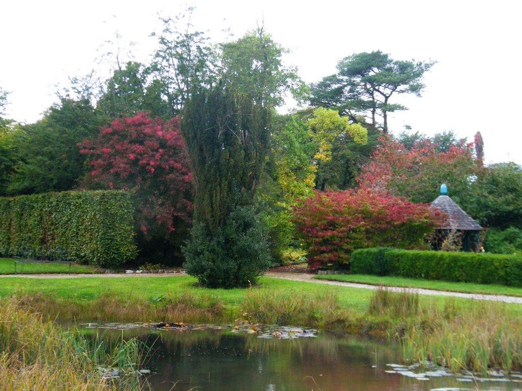 Autumn leaves at Strokestown Park House Gardens