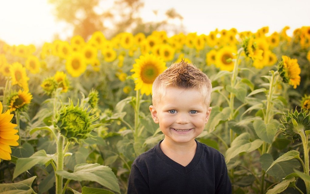 boy with sunflowers last minute birthday present ideas