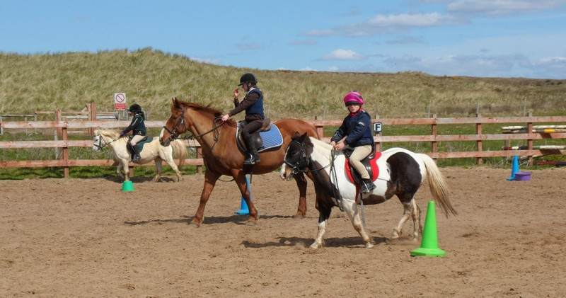 donegal equestrian centre pony camps