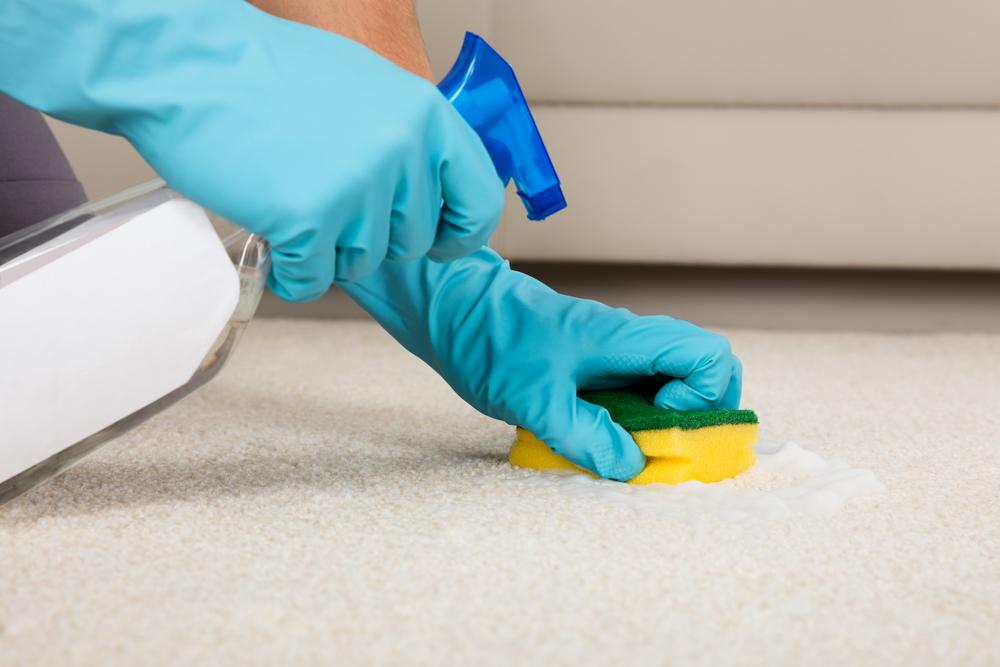 how to clean gum off carpets