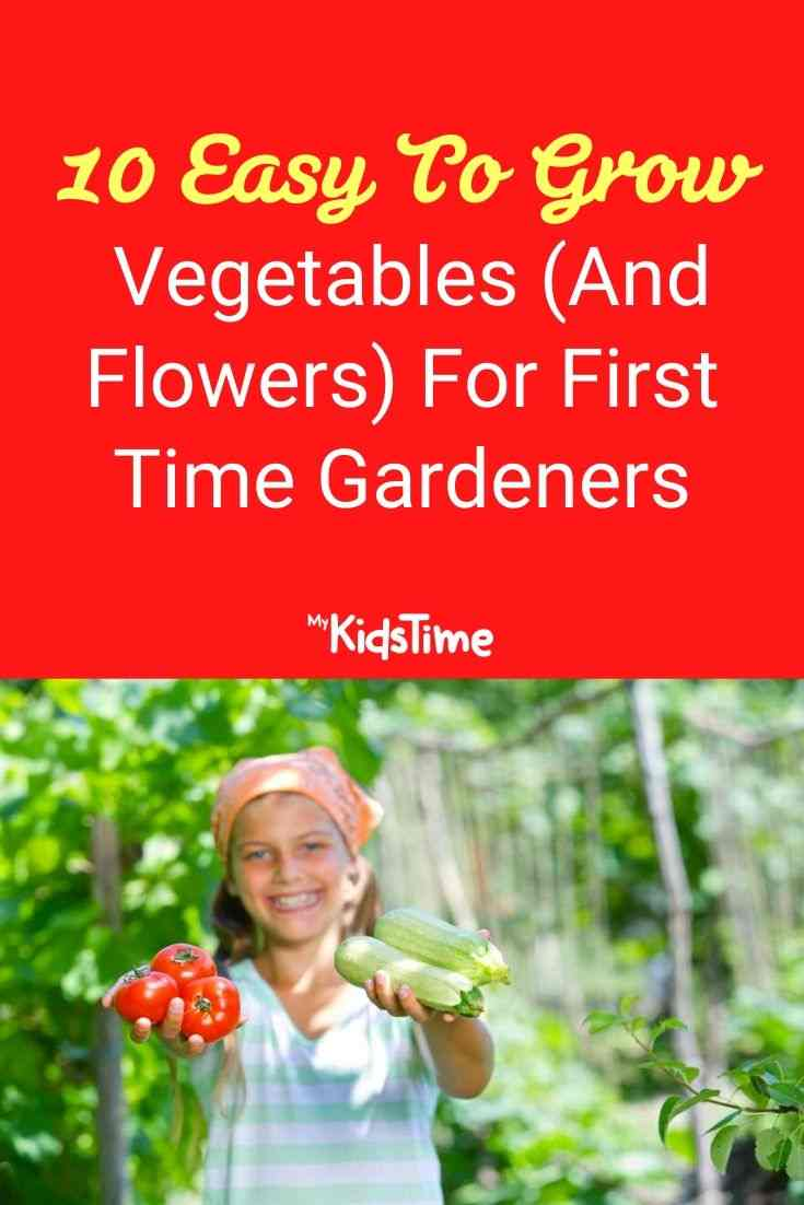 10 Easy To Grow Vegetables For First Time Gardeners