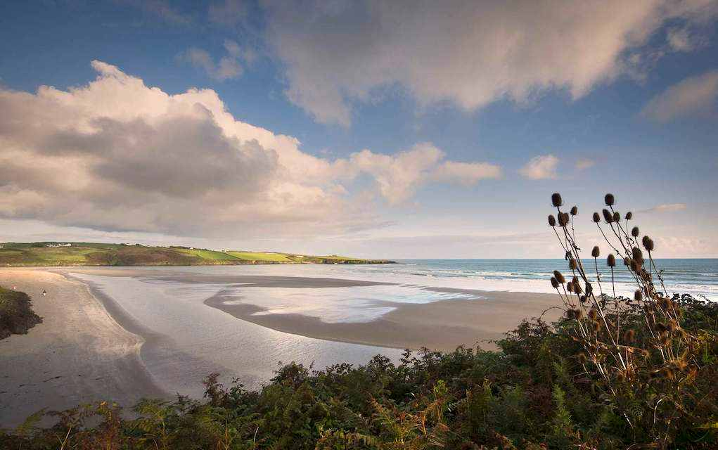 Blue Flag Beaches in Cork