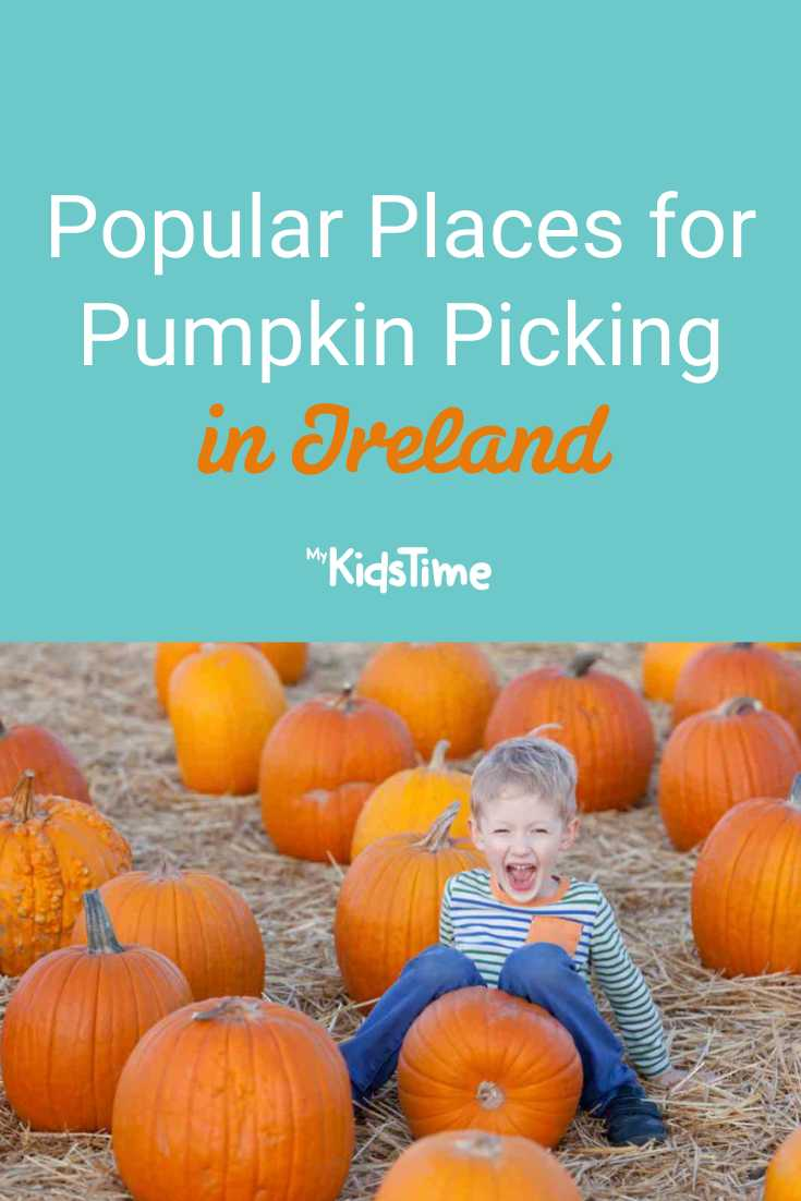 Popular Places for Pumpkin Picking in Ireland – Mykidstime