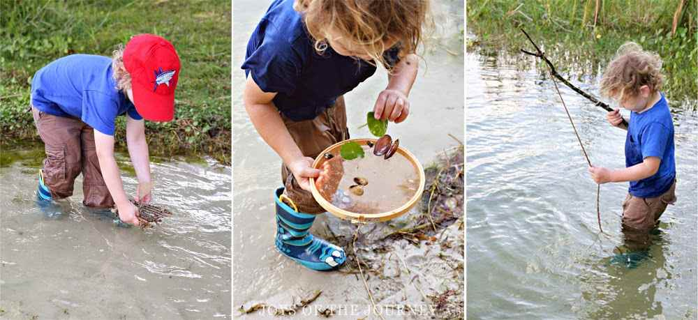 pond hunt water play