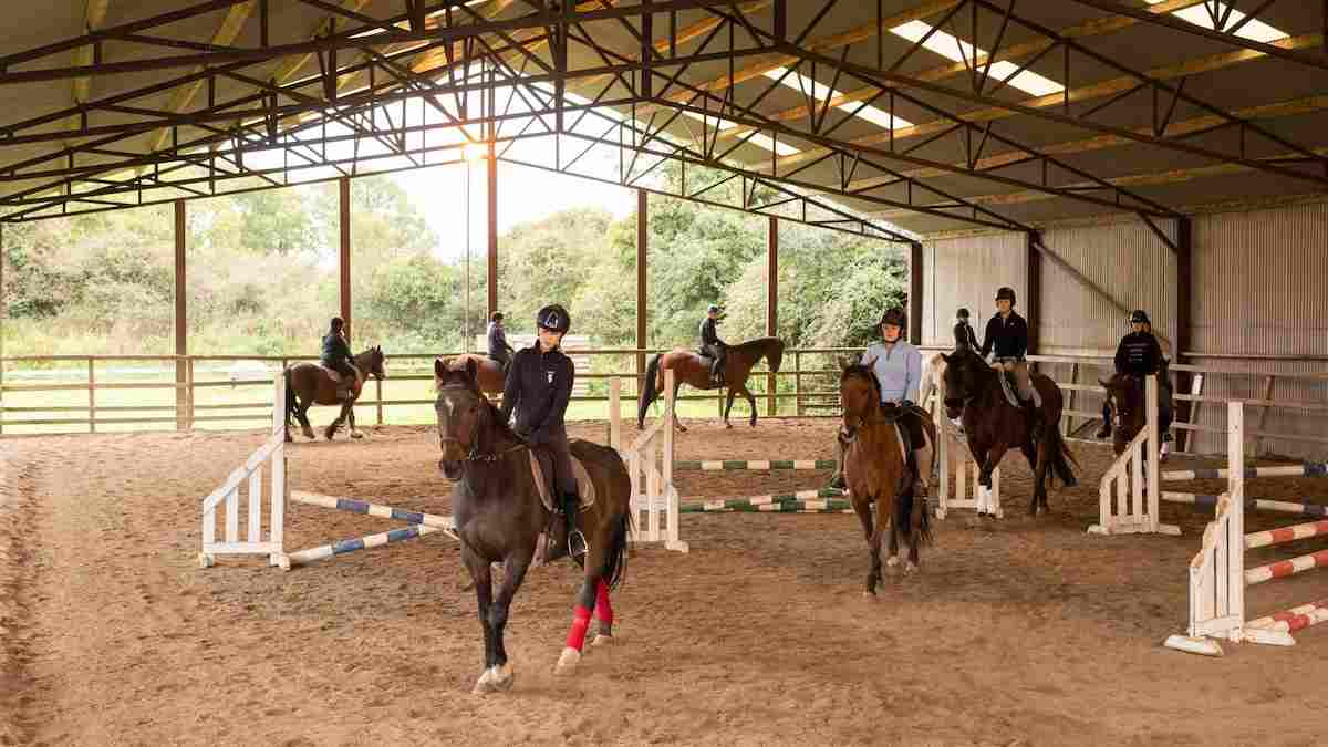 Places to see horses in Ireland Lough Gara Country Pursuits