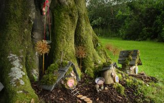 National Museum of Ireland Country Life Fairy Trail