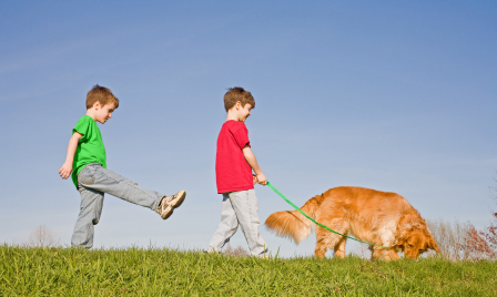 boys-walking-dog